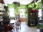 Mladá žena pestuje v byte viac ako 500 rastlín!