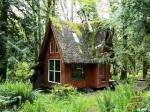 Chalúpka uprostred čarovného lesa dokazuje, že k šťastiu stačí príroda!